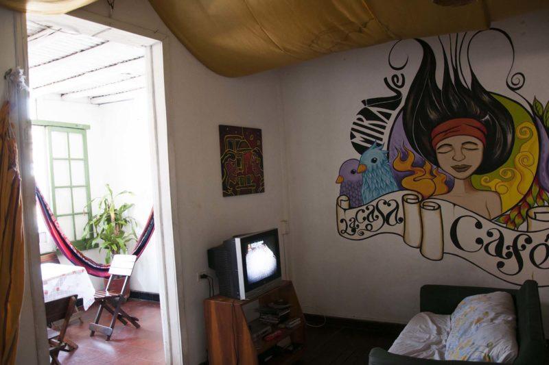 DSC 1705 800x533 - Gallery