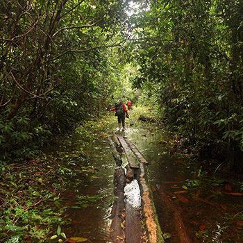 ASC 1481 350x350px 1 350x350 - Wyprawy do Kolumbii - Podróże do źródeł