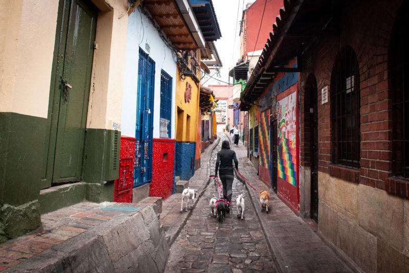 DSC0140 1 800x534 - Galeria-Kolumbia-2020