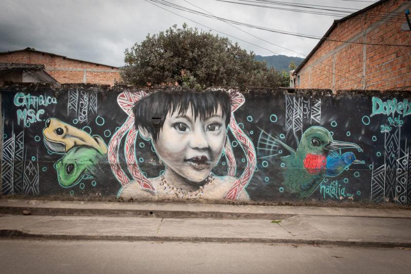 DSC0159 1 800x534 - Galeria-Kolumbia-2020