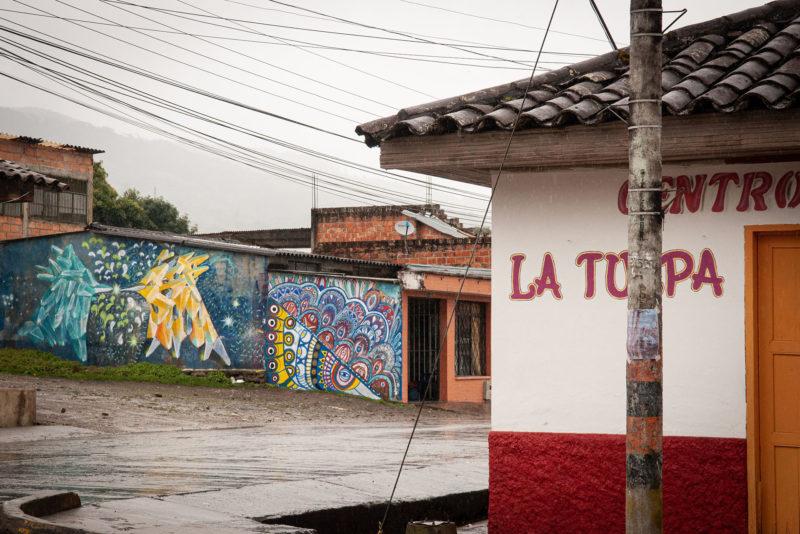 DSC0187 1 800x534 - Galeria-Kolumbia-2020