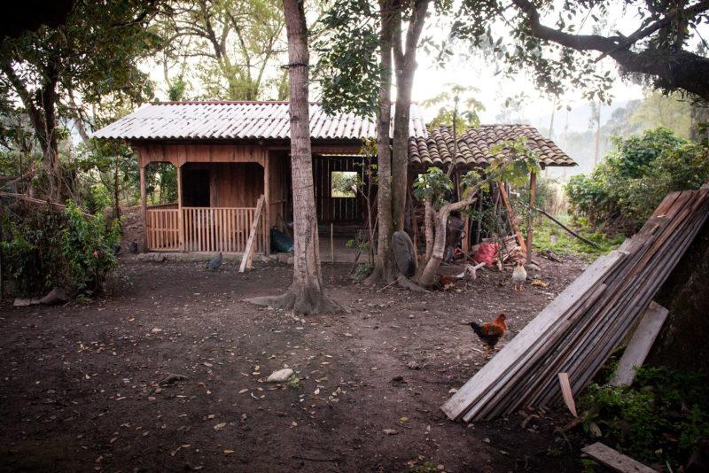 DSC0199 1 800x534 - Galeria-Kolumbia-2020
