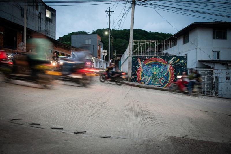 DSC0216 2 2 800x534 - Galeria-Kolumbia-2020