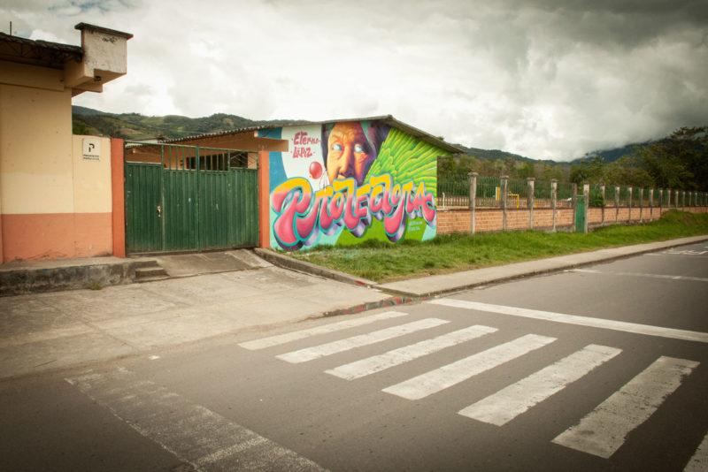 DSC0395 2 800x534 - Galeria-Kolumbia-2020
