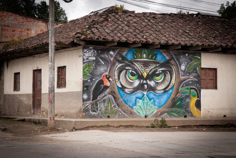 DSC0406 800x534 - Galeria-Kolumbia-2020