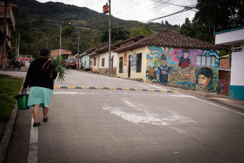 DSC0409 2 800x534 - Galeria-Kolumbia-2020