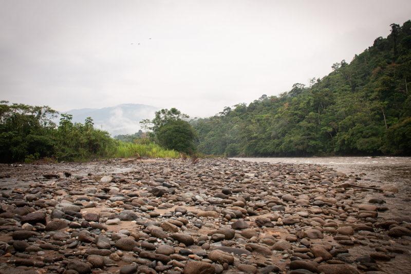 DSC0463 800x534 - Galeria-Kolumbia-2020