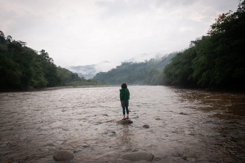 DSC0468 2 800x534 - Galeria-Kolumbia-2020