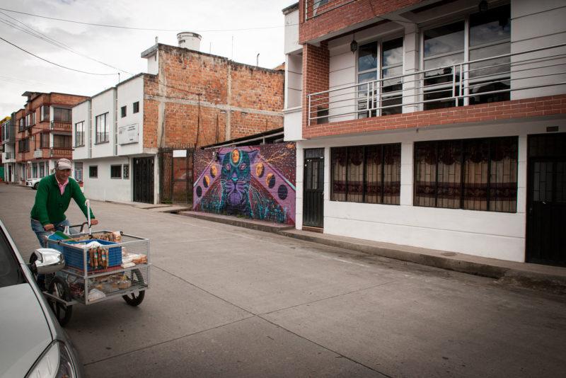DSC0509 800x534 - Galeria-Kolumbia-2020